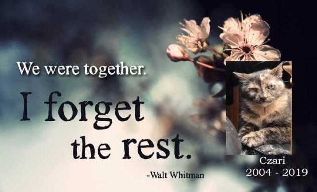 We were together Czari